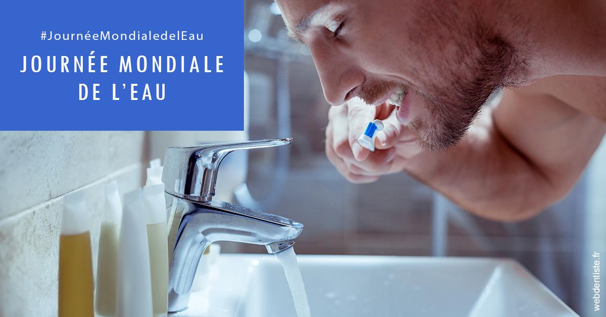 https://dr-atinault-philippe.chirurgiens-dentistes.fr/Journée de l'eau 2